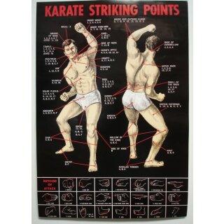 Karate Poster Striking Points Wirkungspunkte